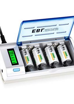 Batteries Smart Charger AA AAA C D 9V Rechargeable
