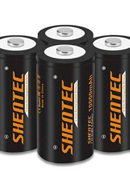 Rechargeable D Batteries High Capacity 10000mAh